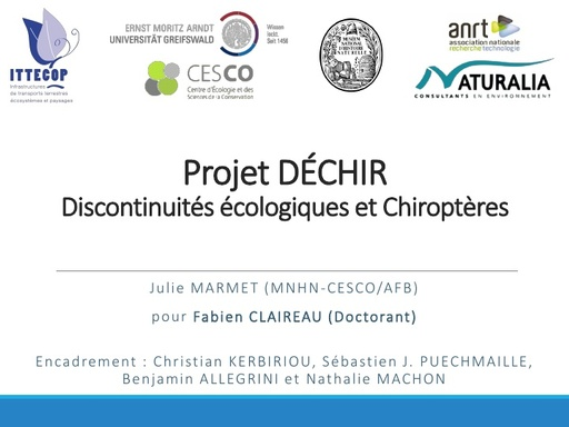 DECHIR Colloque ITTECOP octobre 2017