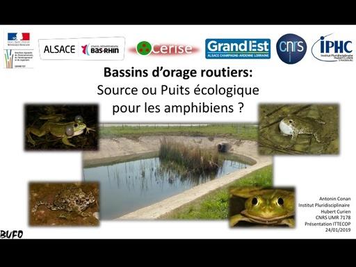 A4 CONAN Antonin, Bassins d'orage routiers : source ou puits écologique ?