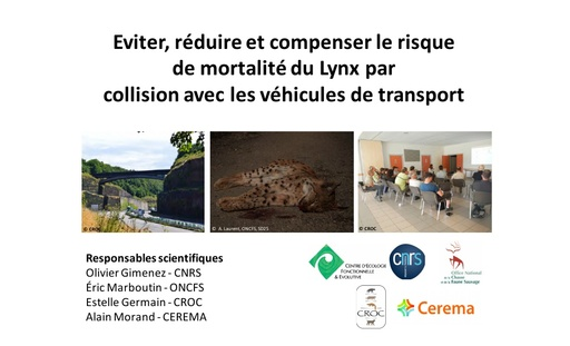 ERClynx  Colloque ITTECOP octobre 2017