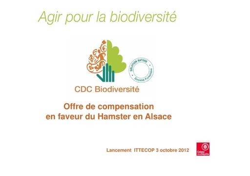 Seminaire 2012 ppt Barre CDCB