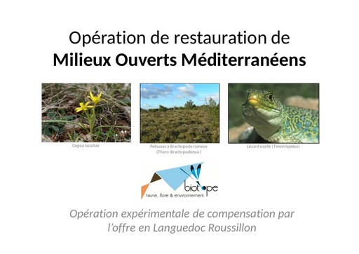 Seminaire 2012 ppt Biotope Quetier