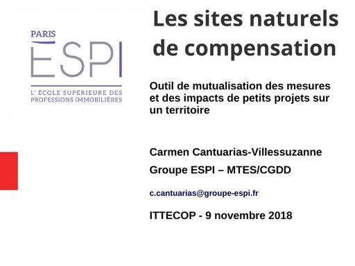 44 Les SNC outil de mutualisation  des mesures et des impacts de petits projets sur un territoire   Carmen CANTUARIAS   Groupe ESPI   MTESCGDD