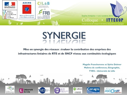 Seminaire 2015 ppt SYNERGIE